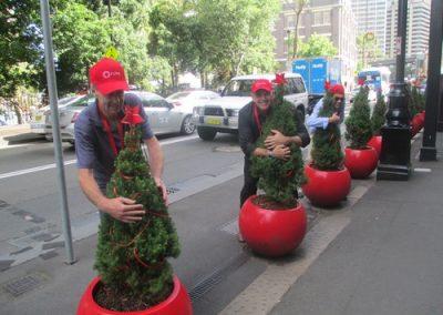 Sydney Amazing Race Christmas 26