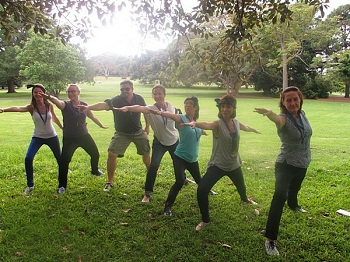 Sydney Amazing Race Botanic Gardens Team Bonding activities